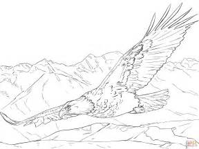 coloring pages bald eagle bald eagle soaring coloring page free printable coloring