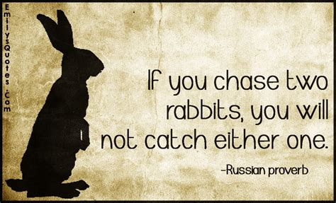 you will not find one or two images instead you will find an entire if you chase two rabbits you will not catch either one