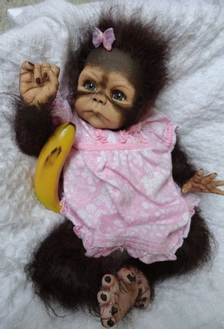 baby monkey   orangutan, primate and monkey