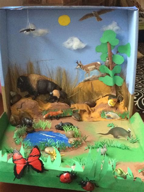 printable diorama animals biome diorama grasslands zoology land animals biomes