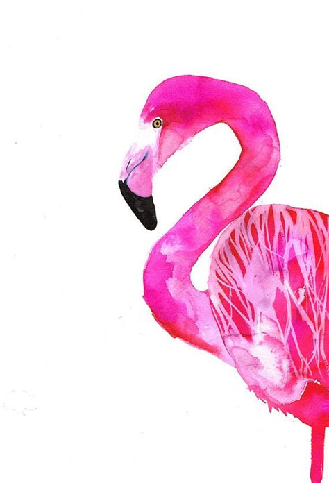 flamingo wallpaper etsy 446 best images about flamingo on pinterest cartoon
