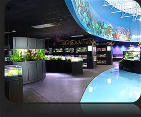 aquarium design network huntington station ny aquarium adventure franchise opportunities
