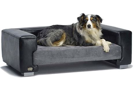 dog sofas for sale fantastic savings on branded dog beds beds sale
