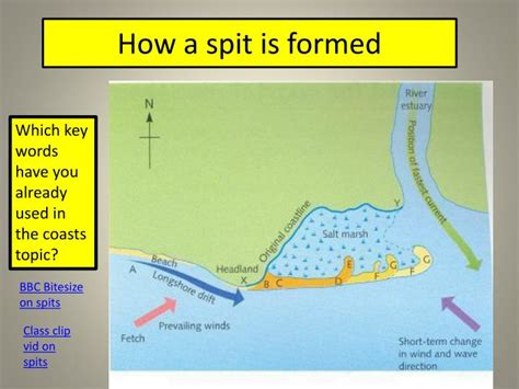 spit diagram ppt depositional coastal landforms beaches spits and