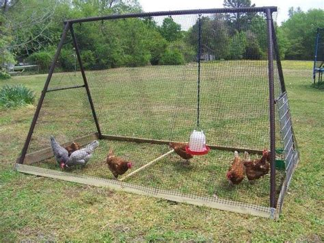 pipe swing set chicken coops the whoot