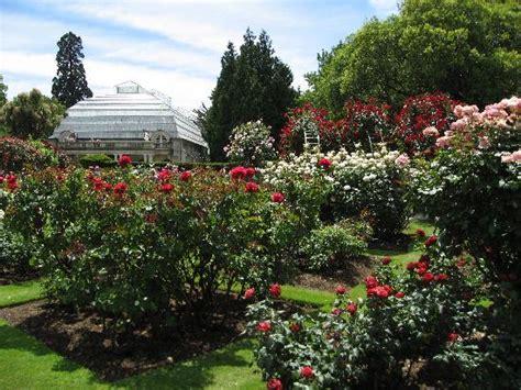 Garden Christchurch Nz Garden At Christchurch Botanical Gardens Picture Of