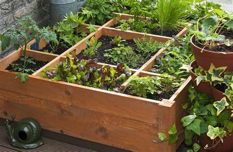 orto in terrazza orto sul balcone in inverno cosa e quando seminare