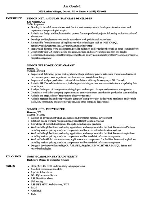 contemporary asp net experience resume sle ensign