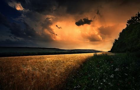 field wildflowers clouds hill storm sunset poland