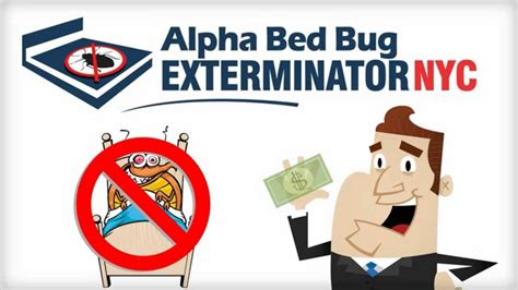 cheap bed bug exterminator travel info heaven on earth