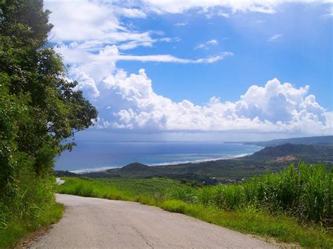 panoramio photo of cherry tree hill barbados