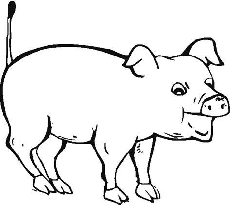 coloring page of a pig pig coloring pages