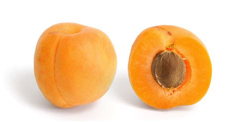 apricot color apricot color
