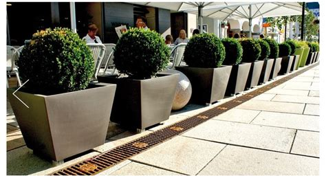 Plant Pots And Planters Looking To Plant Some Modern Plants Helpfulgardener