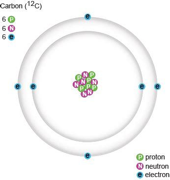 Carbon Protons Neutrons And Electrons by Carbon Has 6 Electrons 6 Neutrons And 6 Protons The Wo
