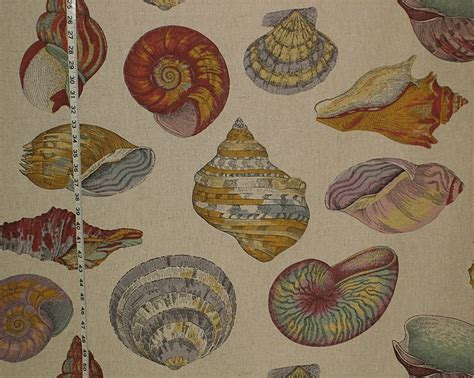 seashell upholstery fabric seashell fabric nautilus tan toile from brick house fabric
