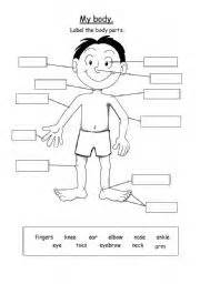 english worksheets body parts worksheets page 24