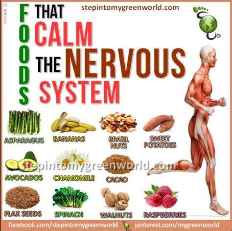 Detox Nervous System by Foods To Calm The Nervous System Parenting