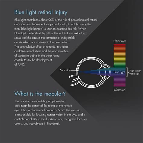 blue light and macular degeneration retinaguard anti blue light screen protectors about blue