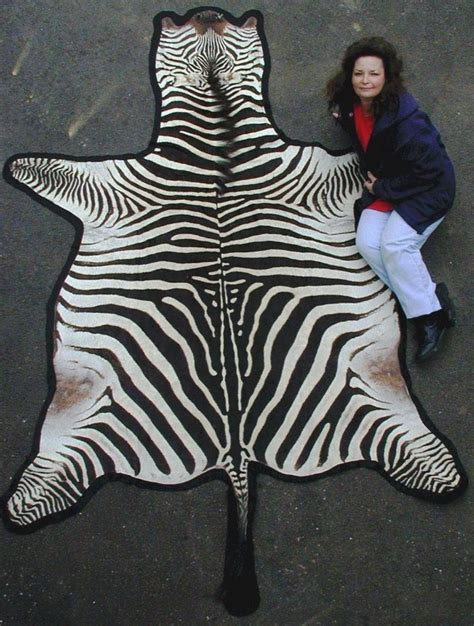 zebra hide rug for sale zebra hide rugs for sale home design ideas