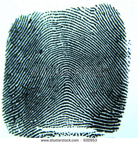 pattern maintenance definition a fingerprint pattern 171 free knitting patterns