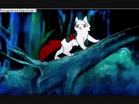 anime film with cats warrior cats cartoon heroes youtube