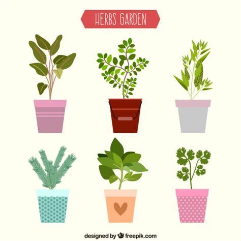 uso gratuito appartamento erbe collezione appartamento giardino scaricare vettori