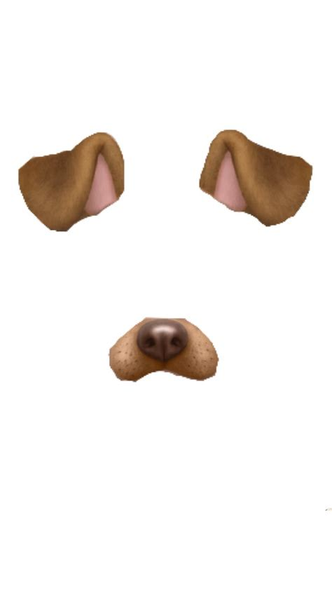 snapchat dog filter transparent   heart