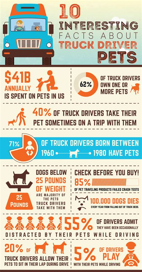 infographic 10 interesting facts about truck driver pets