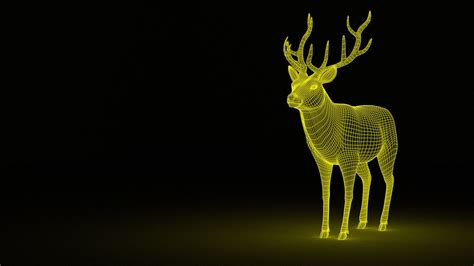 wallpaper deer  digital  creative graphics