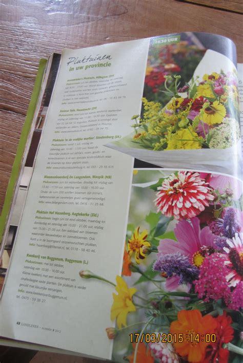 high tea bloemen plukken pluktuin stoutenburg pluktuin theehuis high thea