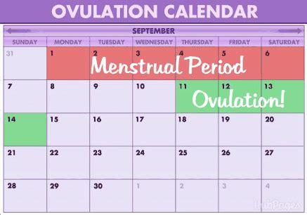 Alat Tes Ovulasi 7 hal penting ini harus diperhatikan para wanita yang baru