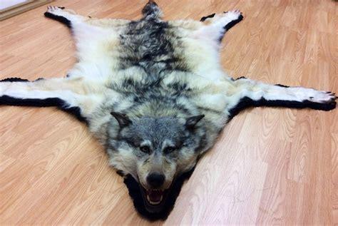wolf rug taxidermy wolf rug meze