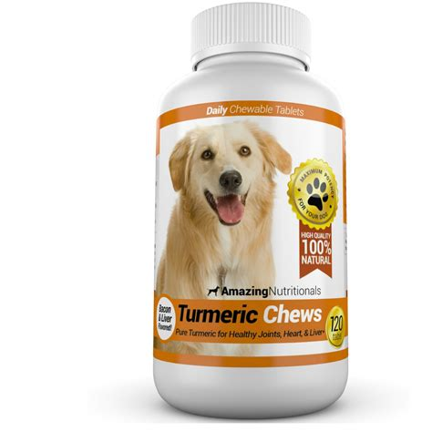 pet meds for dogs top 10 medications for dogs veterinarians talk local talk local
