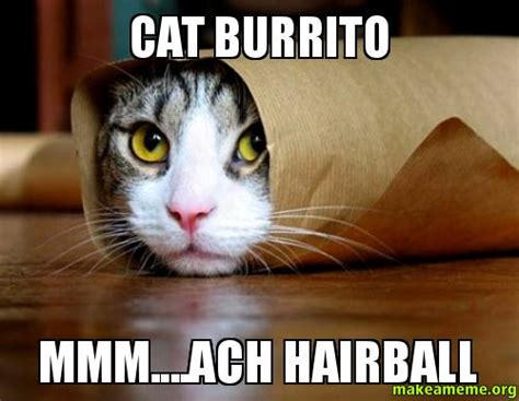 Burrito Meme - space cat meme memes