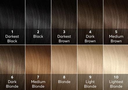 hair color levels gudu ngiseng hair color levels 110 chart of hair