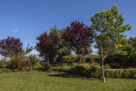 Landscape Architect El Dorado El Dorado Landscape Design Landscaping And Landscapers