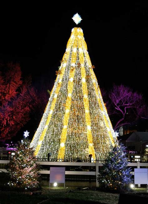 dc christmas trees ge sets trees aglow connecticut post