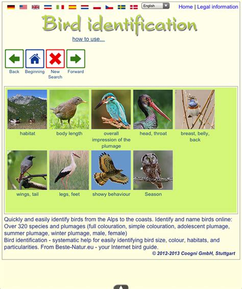 identify birds android apps on google play