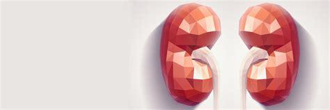 alimentazione acido urico calcolosi renale