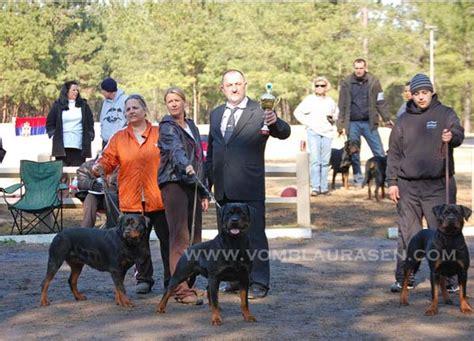 aaron tabor rottweiler airk sark sieger show 2010 show photo s