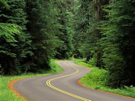 hp wallpaper winding road 1024x768 winding road desktop pc and mac wallpaper
