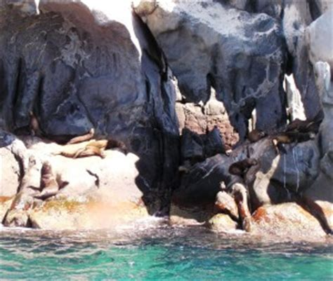 san pedro california boat rides san pedro island san carlos tours san carlos sonora mexico
