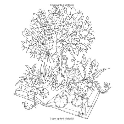 magical jungle an inky 0753557169 amazon com magical jungle an inky expedition and coloring book for adults 9780143109006