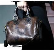 Louis Vuitton Handbags Fall 2013  Galleryhipcom The Hippest