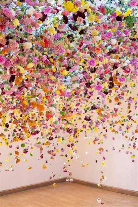 17 best ideas about november flower on pinterest 17 best ideas about flowers on pinterest flower names