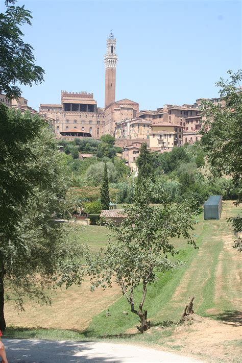 best restaurants siena italy a traveler s guide to tuscany some of the best