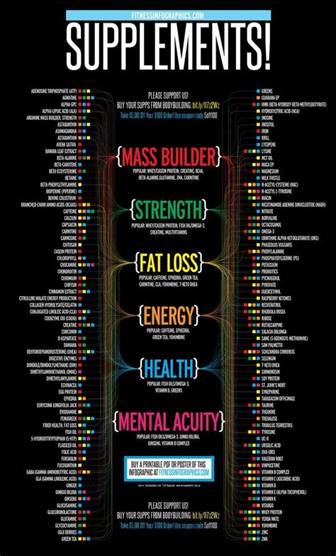 supplement infographic fitness infographics basics supplements 187 fitness