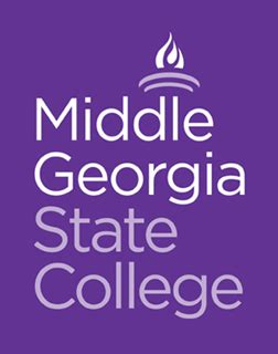meet our new faculty: middle georgia state university
