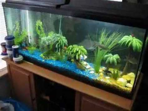 aquarium design homemade creative diy fish tank decor ideas youtube